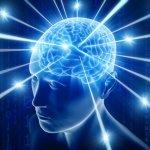 Как замедлить болезнь Альцгеймера?